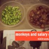 Thumbnail image for Monkeys and salary caps